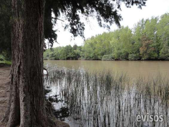 Vendo quinta en el delta 15 has sobre rio carabelas en