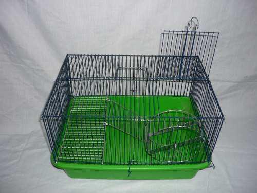 Hamstera con bandeja plastica y rueda de ejercicio