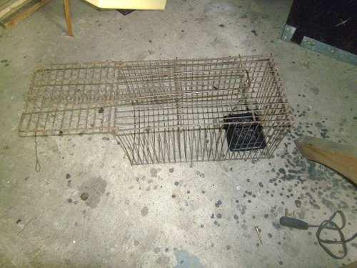 Trampa jaula de roedores