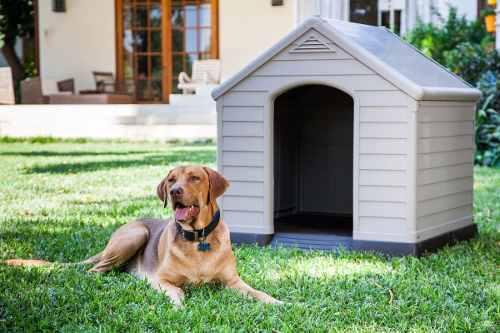 Cucha casa perro la mas grande 95x99x99cm resistente termica