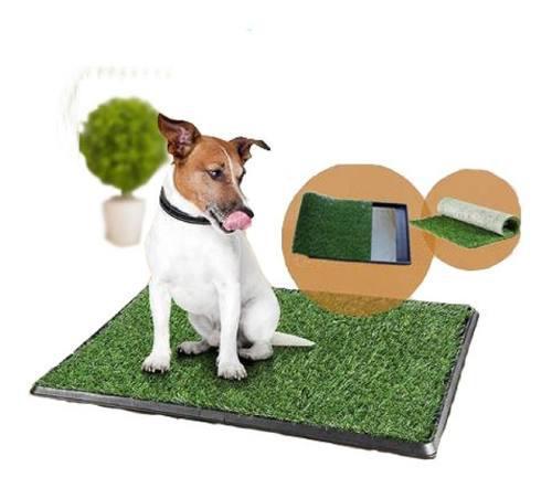Bandeja sanitaria baño mascotas cesped perro 55 x 25