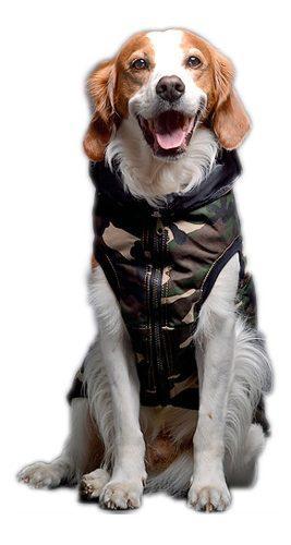 Campera chaleco abrigo camuflado para perro grande elecant *