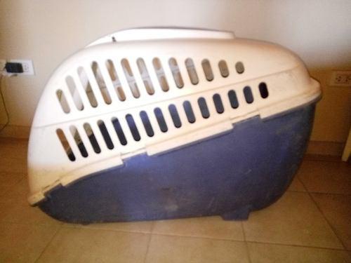 Canil de transporte de perros
