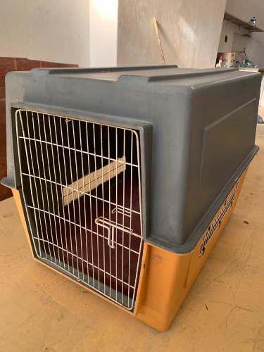 Canil para transporte perro gigante