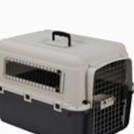 Jaula transporte plástica 67x51x47 cm mascota