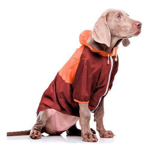 Piloto impermeable perros forrado talle 7 golden labrador