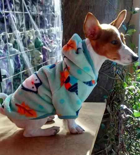 Ropa buzos soft perros chicos 35 cm /40 cm