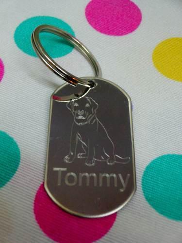 Chapa para perros gatos grabadas mascotas diseño raza