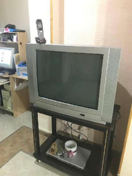 Televisor 29 pulgadas basicline
