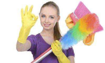 Se ofrece limpieza en general en casas, oficinas, locales y