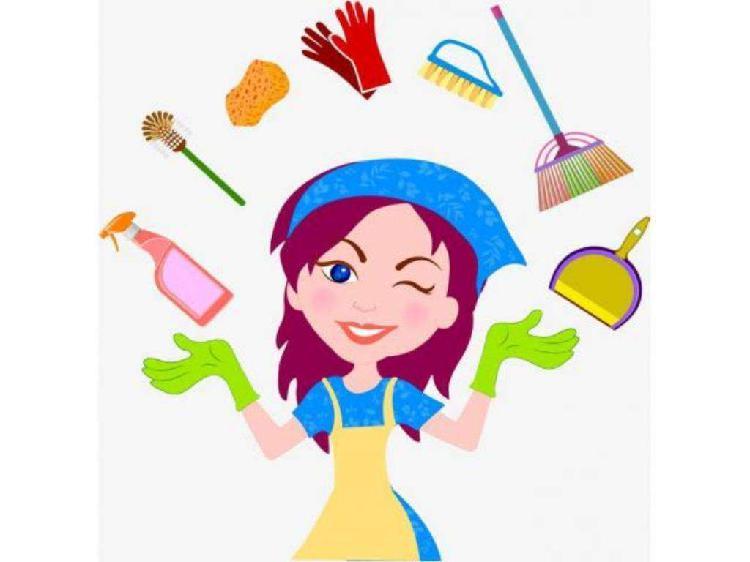 Servicios de limpieza en general.