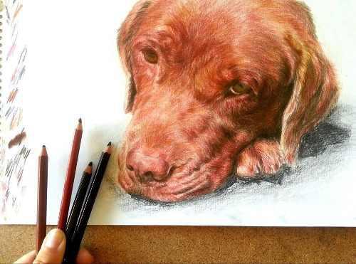 Retrato dibujo lápiz negro a3 de personas mascota perro