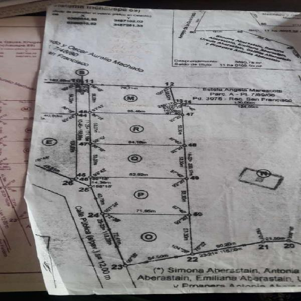 Vendo terreno de 4000 mts2 en San Francisco del Monte de Oro