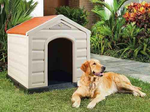 Cucha / Casa De Perro Grande Térmica Plastica