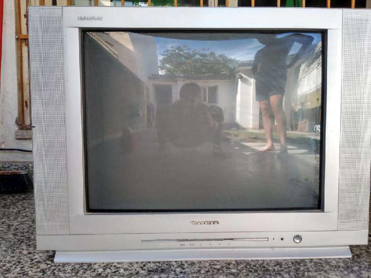 Tv 32 Funionando