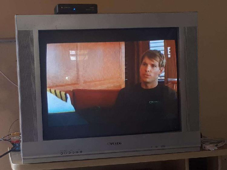 Vendo Tv 29'