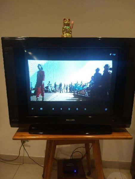 Tv philips 29 pulgadas slim