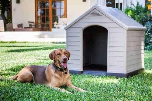 Cucha perros grande keter térmica 95x99x99cm belgrano
