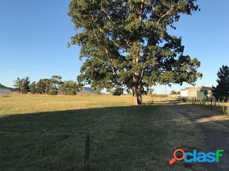 Casa quinta + galpones en venta - ruta 226 km 53