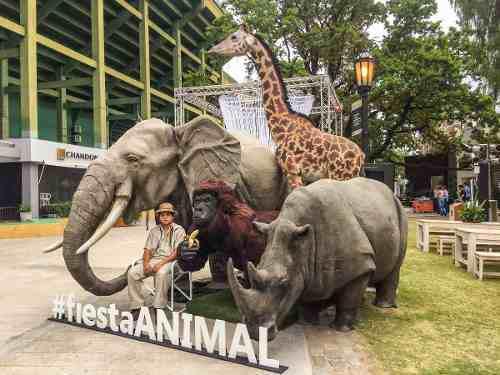 Animales, jirafa, arte, escultura, ambientacion,decoracion
