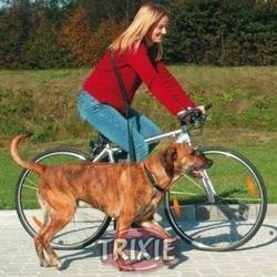 Correa perro anti tirones manos libres paseo bici running