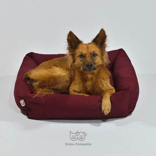 Moisés cama para mascotas c/funda gabardina 50x50 perro