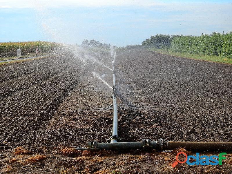 Proyecto y ejecución de obras de riego y drenaje