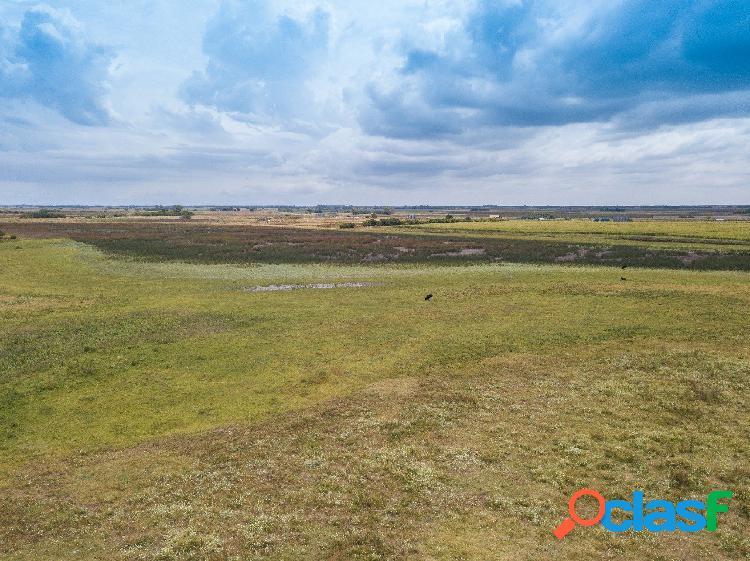 Campo sobre ruta 74 km 12