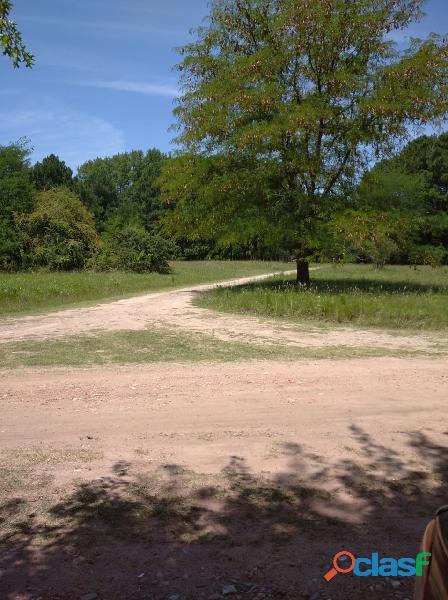 Terrenos de 1.500 m2 a 1 cuadra ruta 8 km 71 en cuotas mensuales