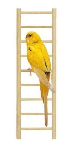 Escalera percha colgante madera aves cocotillas step 9 savic
