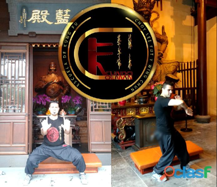 Clases de kung fu choy lee fut en belgrano (argentina)