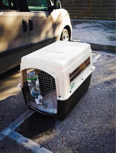 Jaula de transporte para perros grandes