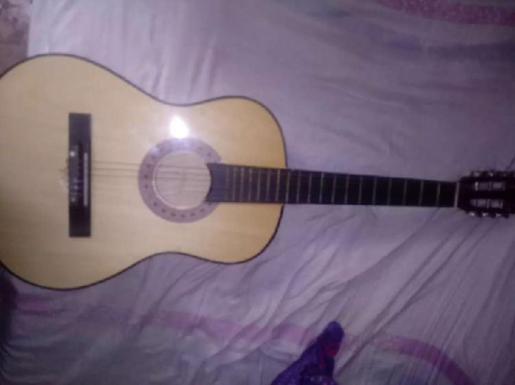 Guitarra acuatica nueva