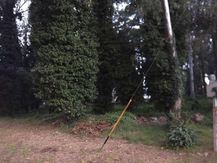 Terreno bosque peralta ramos