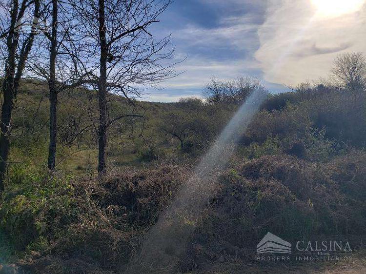 Terreno 3 hectareas en venta - la pampa - asconchinga -
