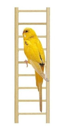 Escalera percha colgante madera aves canarios step 5 savic