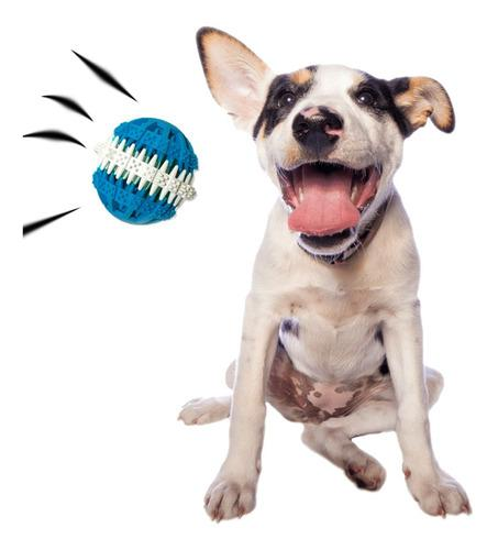 Juguetes perros chicos pelota limpieza dental cancat 6 cm