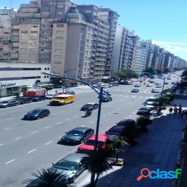 Departamento zona plaza colon