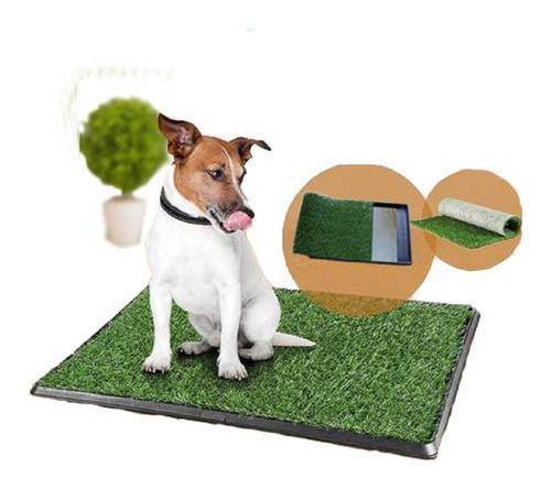 Bandeja sanitaria baño mascotas kit cesped perros 42 x 42