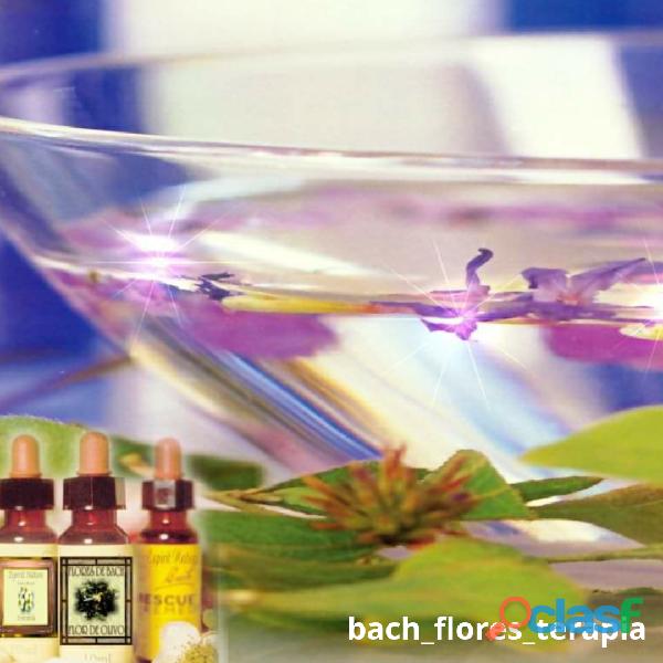 Flores de bach gotero personalizado consulta on line