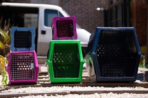 Caja 50 canil de transporte, gatos perros gerliplast