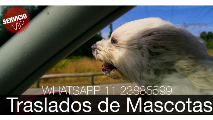 Traslado de mascotas, taxi de mascotas, remis de perros,