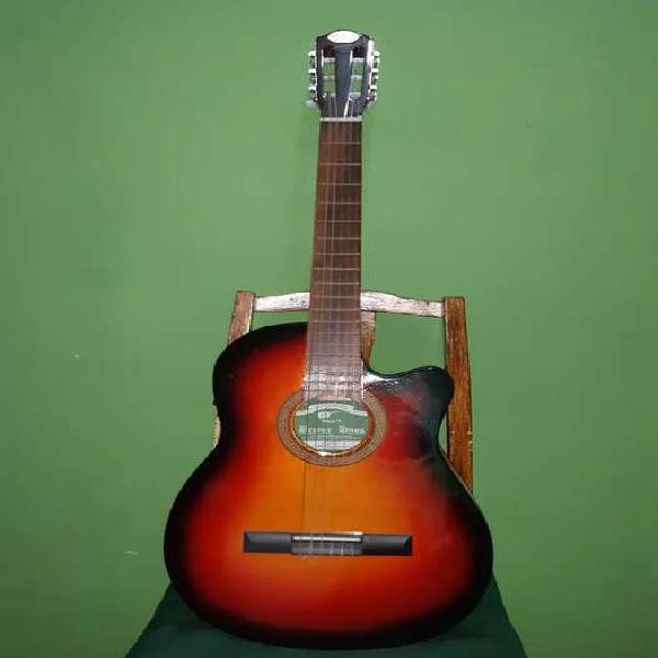 Guitarra acústica con funda