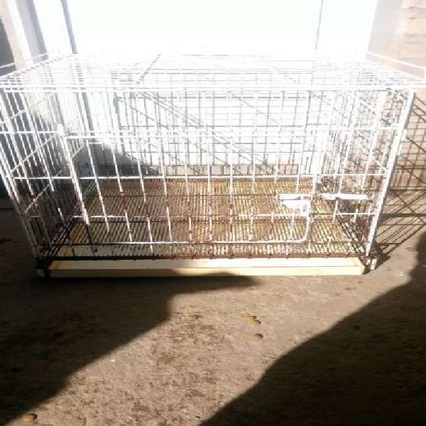 Canil, jaula para perros 60x60x60