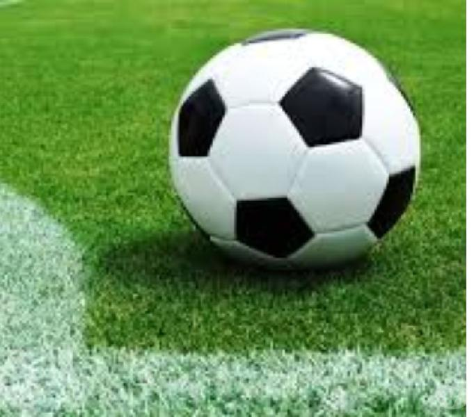 Fondo de comercio, cancha de fútbol 5 césped sintético