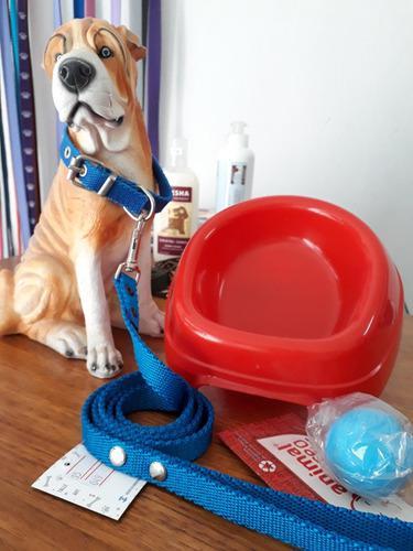 Kit completo cachorro o perro pequeño. accesorios. caniche