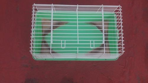 Jaula para conejos/cobayo
