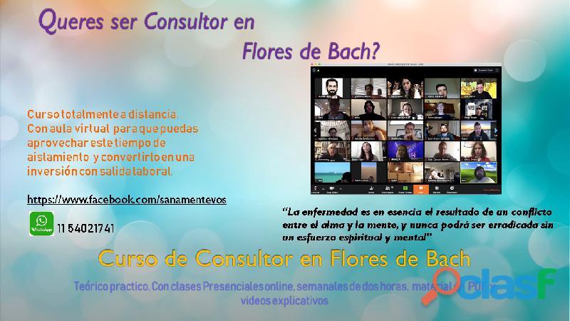 CONSULTOR EN FLORES DE BACH
