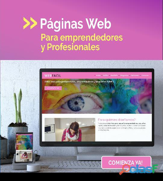 Diseñador y programador de páginas web