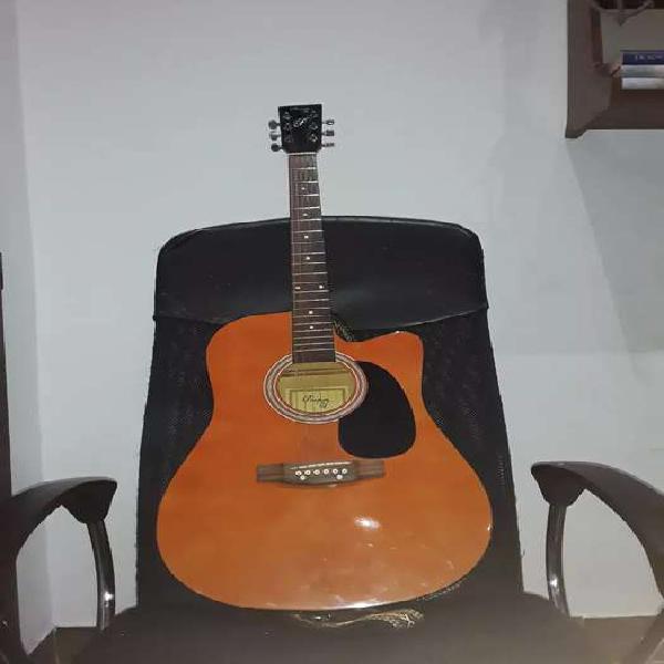 Guitarra electroacustica parquer.